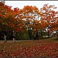 大沼国定公園(Ōnuma Quasi-National Park)07