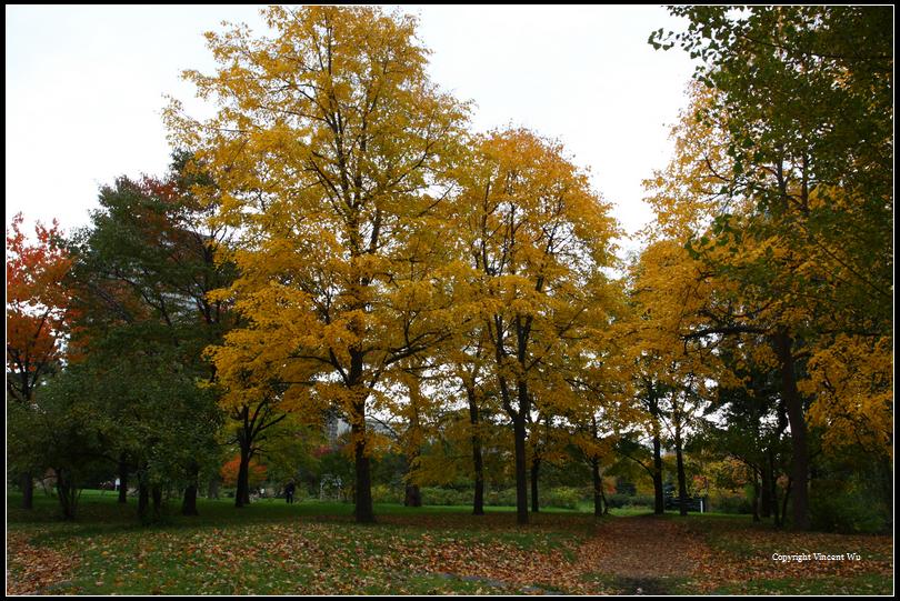 中島公園(Nakajima Park)06