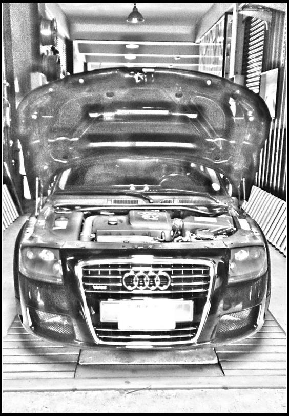 Audi56