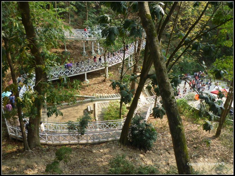 竹崎親水公園10