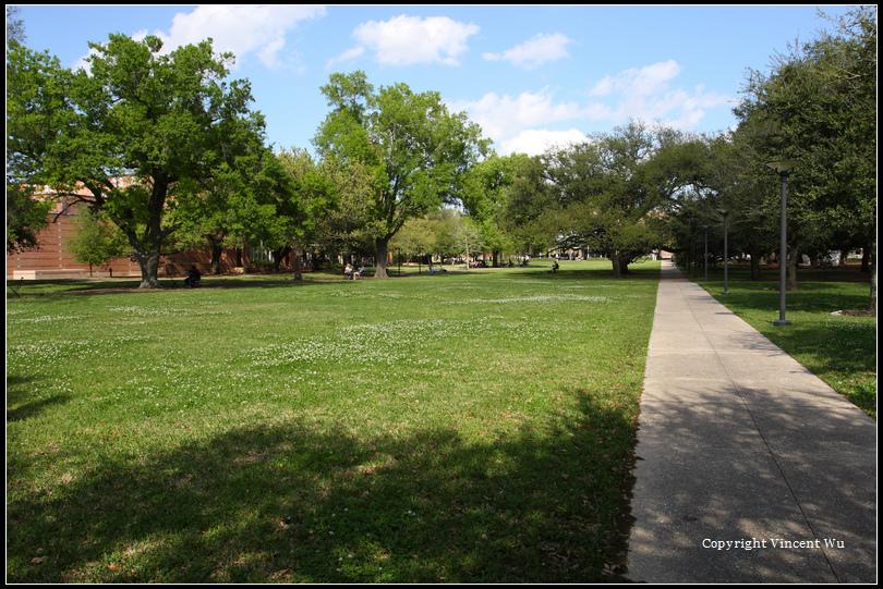 萊斯大學(Rice University)04