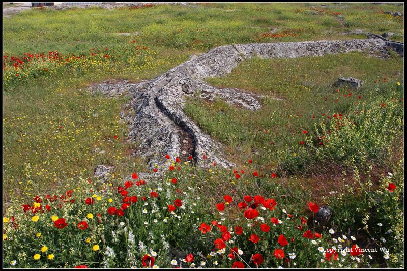 希拉波里斯古城(HIERAPOLIS ÖRENYERİ/HIERAPOLIS ARCHAEOLOGICAL SITE)08