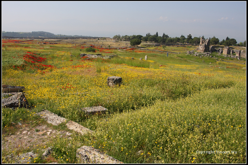 希拉波里斯古城(HIERAPOLIS ÖRENYERİ/HIERAPOLIS ARCHAEOLOGICAL SITE)12