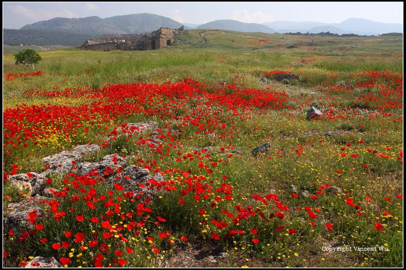 希拉波里斯古城(HIERAPOLIS ÖRENYERİ/HIERAPOLIS ARCHAEOLOGICAL SITE)13