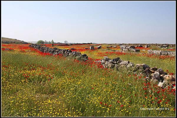 希拉波里斯古城(HIERAPOLIS ÖRENYERİ/HIERAPOLIS ARCHAEOLOGICAL SITE)15