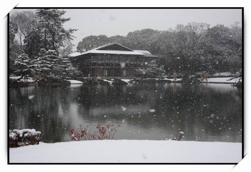 徳川園(Tokugawaen)12