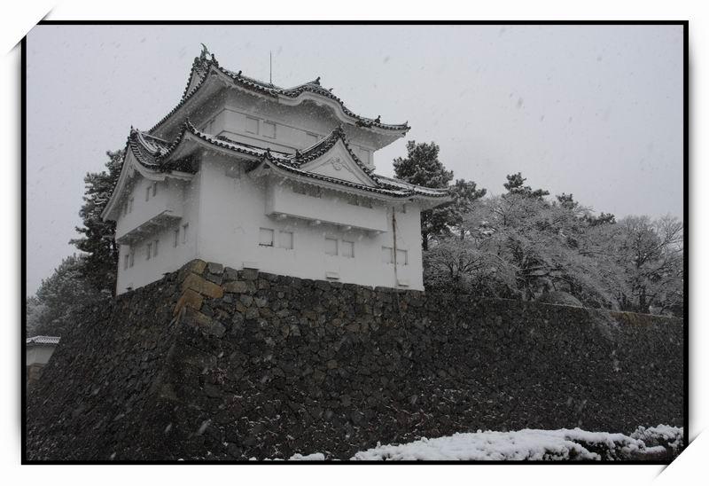 名古屋城(Nagoya Castle)15