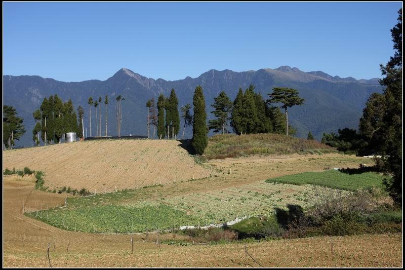 福壽山農場34