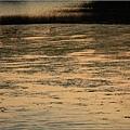 鹽水溪13