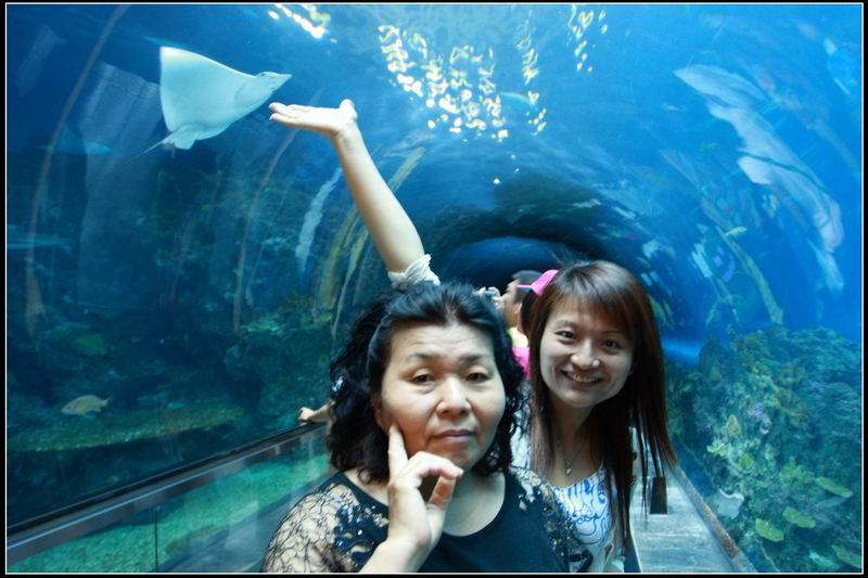 國立海洋生物博物館07