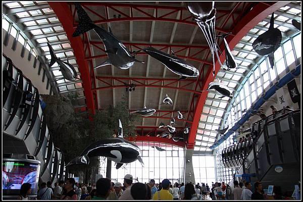 國立海洋生物博物館27
