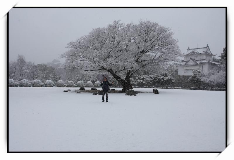 名古屋城(Nagoya Castle)12