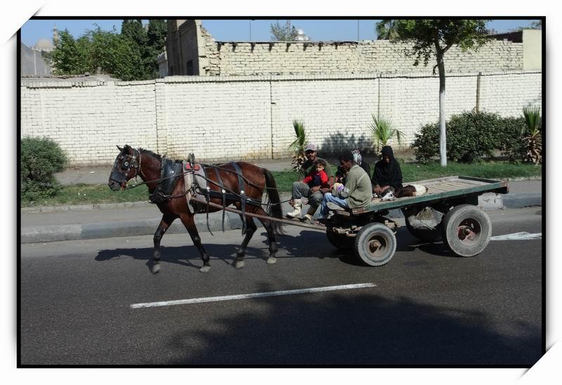 開羅(Cairo)06