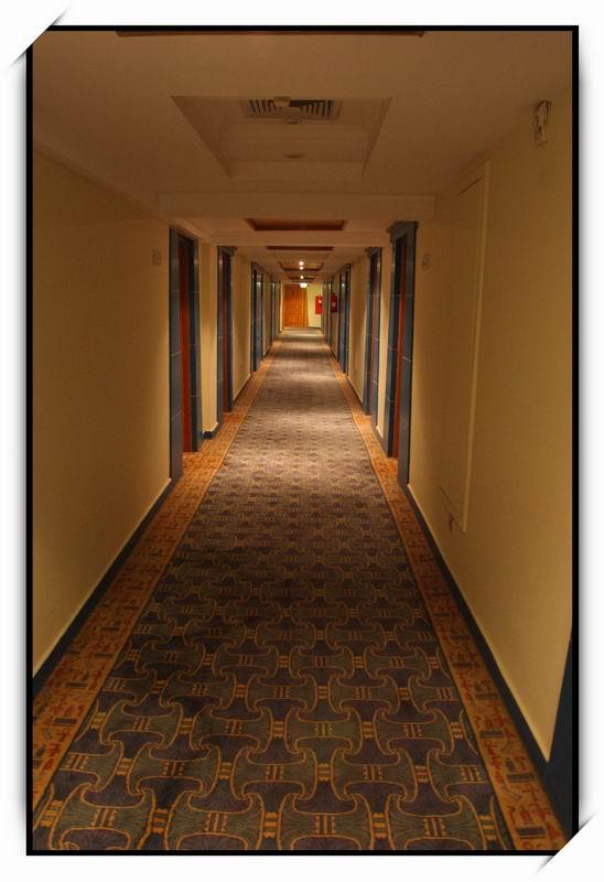 開羅(Cairo)Zoser Hotel02