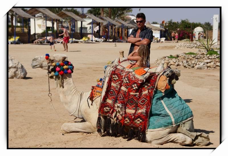 胡爾加達(Hurghada)Harmony Makadi Bay Hotel & Resort28