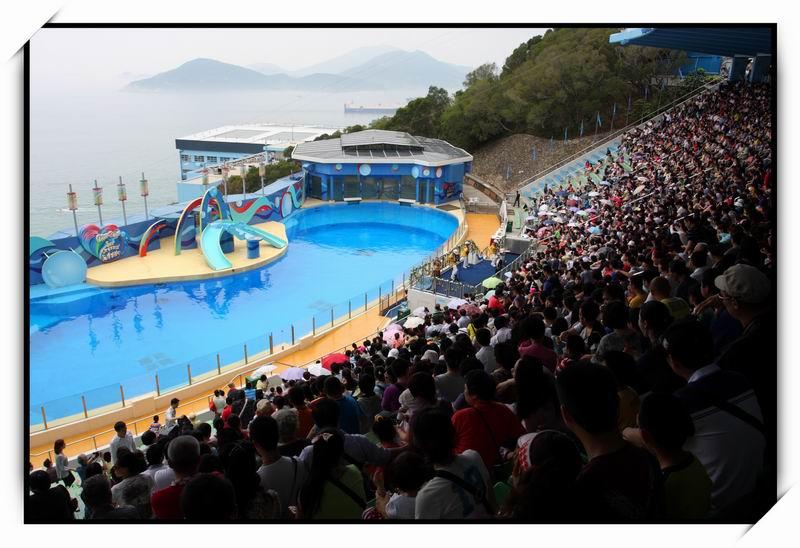 海洋公園(Ocean Park)37