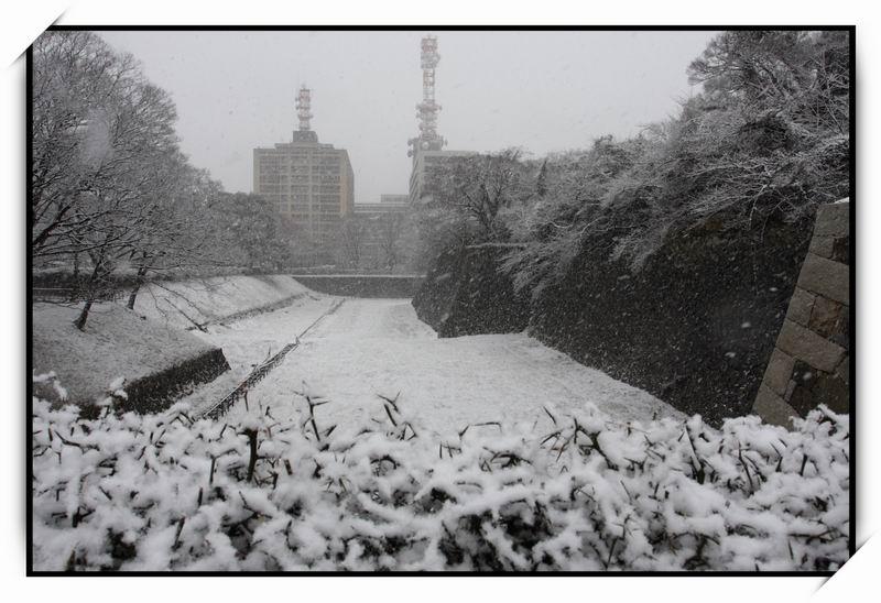名古屋城(Nagoya Castle)01