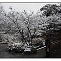 徳川園(Tokugawaen)05