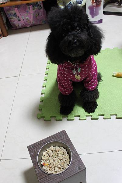 元氣鮮食乾煎法5