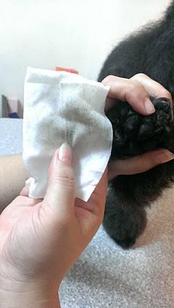蹦蹦跳寵物專用濕紙巾35.jpg