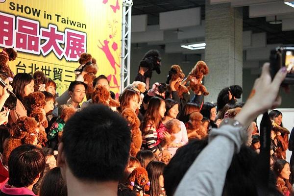 20101120_ 台北寵物用品展貴賓狗家族6.jpg