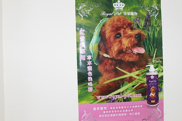 20101225狗狗聖誕趴之皇家贊助篇 032.jpg