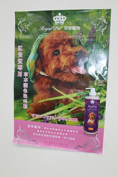 20101225狗狗聖誕趴之皇家贊助篇 030.jpg