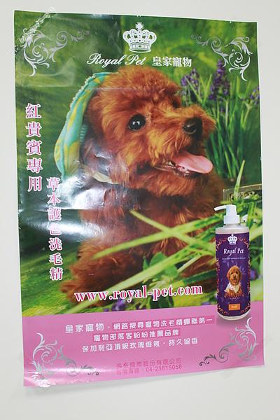 20101225狗狗聖誕趴之皇家贊助篇 031.jpg