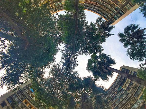 Snapseed (49).jpg