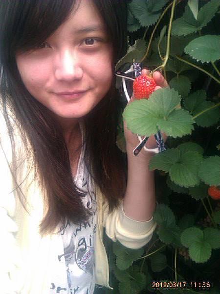 美女跟草莓的合照