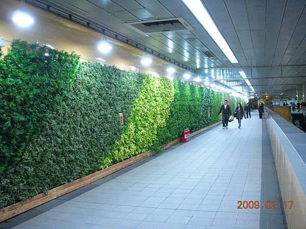 市府站植生牆完成