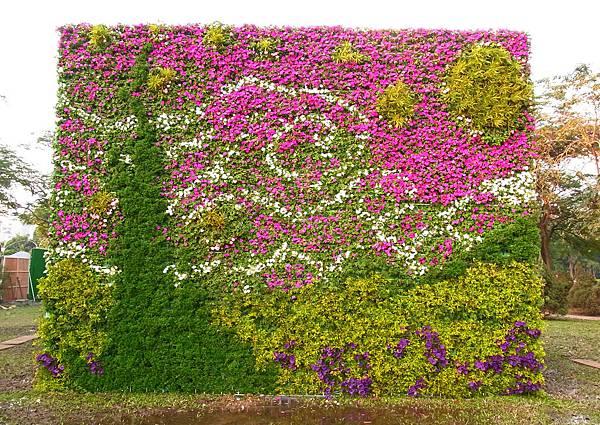 梵谷星空綠牆完成!