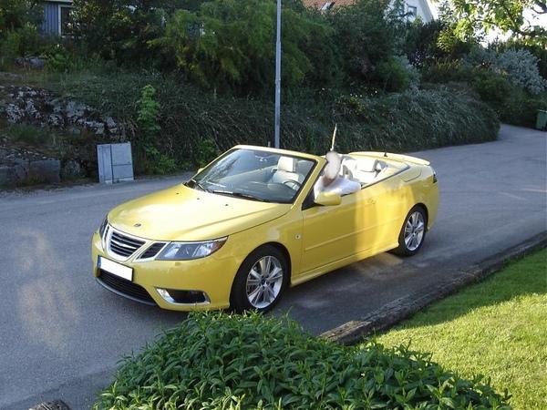 9-3 CV w Lynx Yellow新顏色.jpg