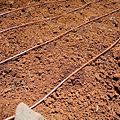 Introduce of Drip Irrigation_Sunny_05.jpg
