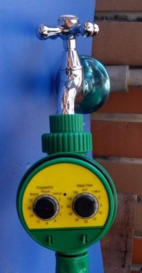 Drip Irrigation_Nepenthes_1.jpg
