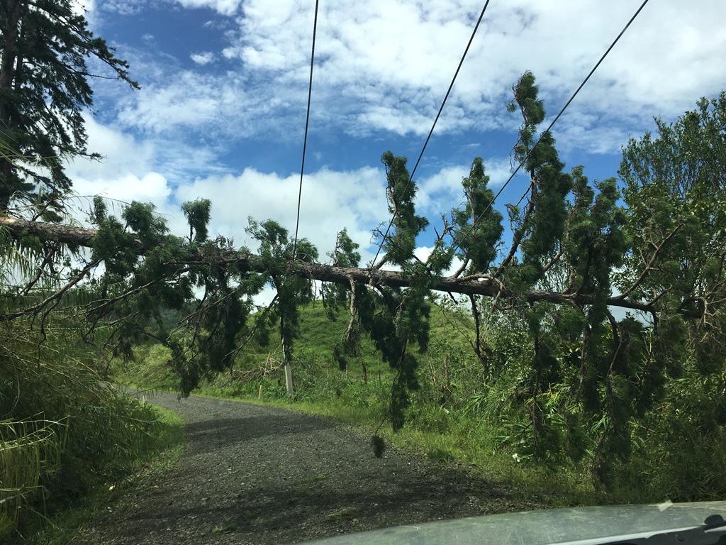 Fiji_TC Winston_20160223_9.JPG