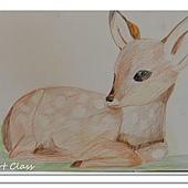 色鉛筆作品 (13)