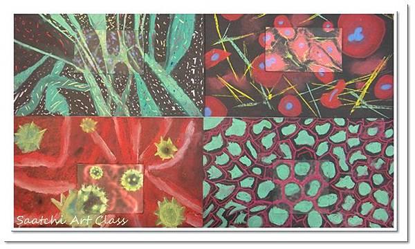 細胞圖像 (6)