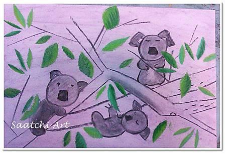 無尾熊 (1)
