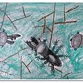 甲蟲大戰 (11)
