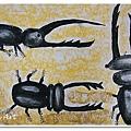 甲蟲大戰 (13)