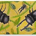 甲蟲大戰 (15)