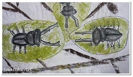甲蟲 (1)