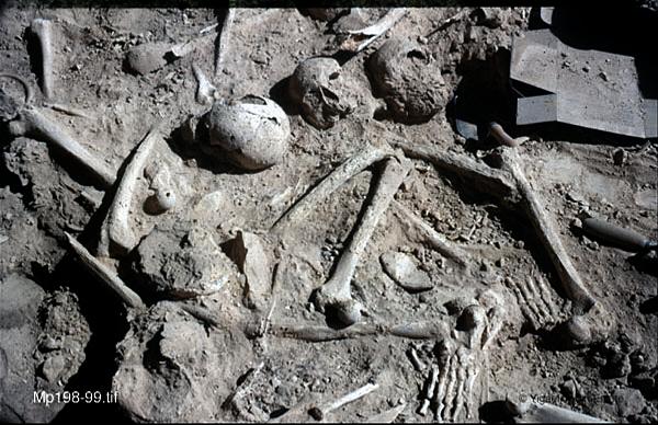 史前巨人遺骸
