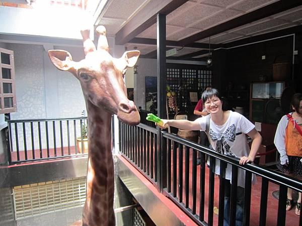 鄭和博物館 麒麟鹿