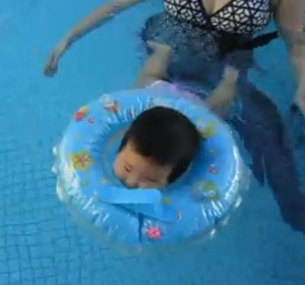 chestnut swim