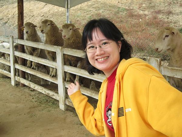 大關嶺牧羊場