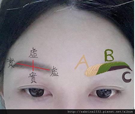 眉毛習作ABC.jpg