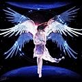 折翼天使不流淚