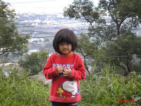 2007元旦楓林步道-11